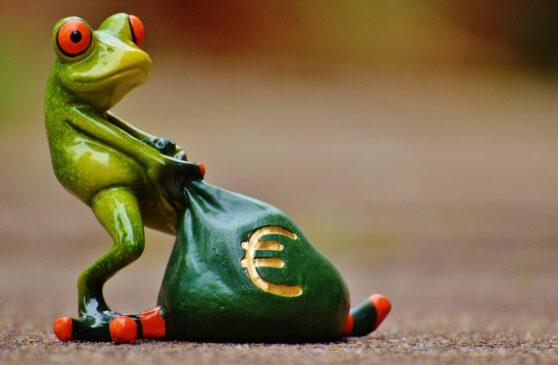 frog pulling a bag of cash. How to start a profitable website